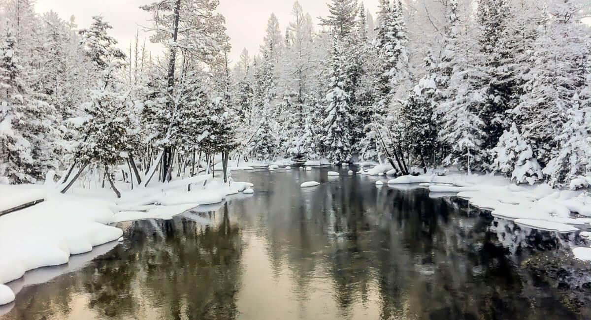 Fresh snowfall on the Cedar River