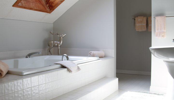 Trappers Lodge condominium bathroom