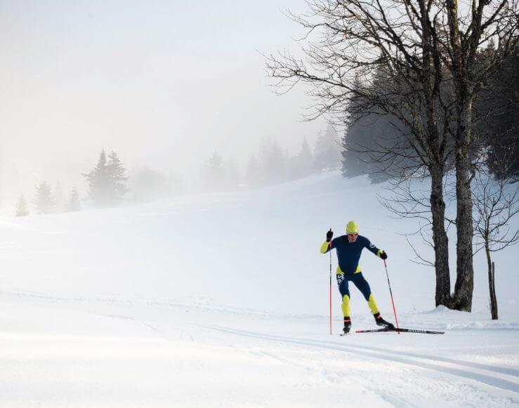 Nordic skate skier