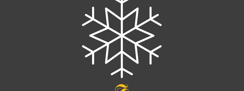 Snowflake with Schuss Logo