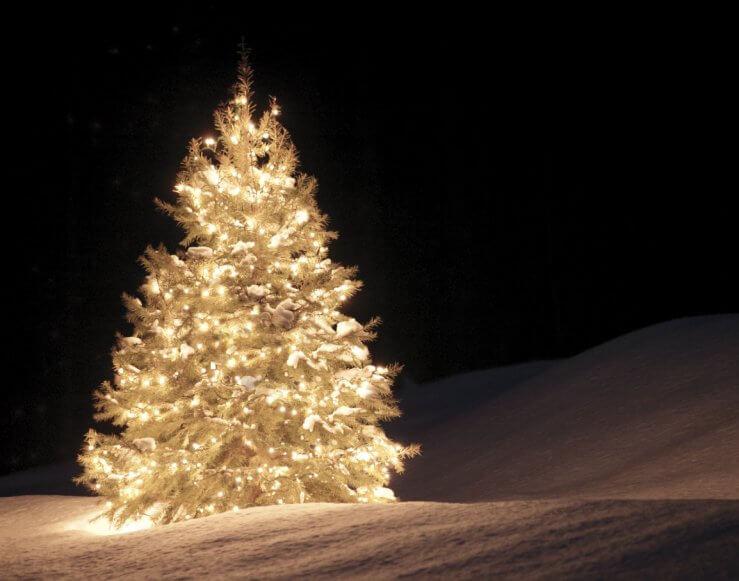 Shanty Creek's Tannenbaum Blitzen at Ivan's celebrates the arrival of the winter season.