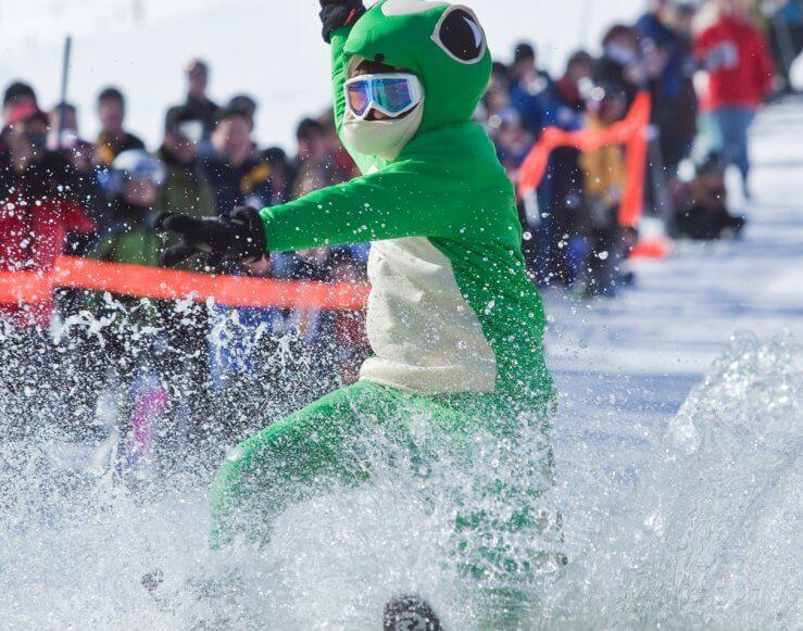 Frog skiing across slush cup pond