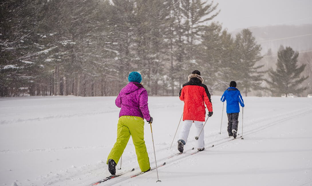Group of 3 Nordic Skiing