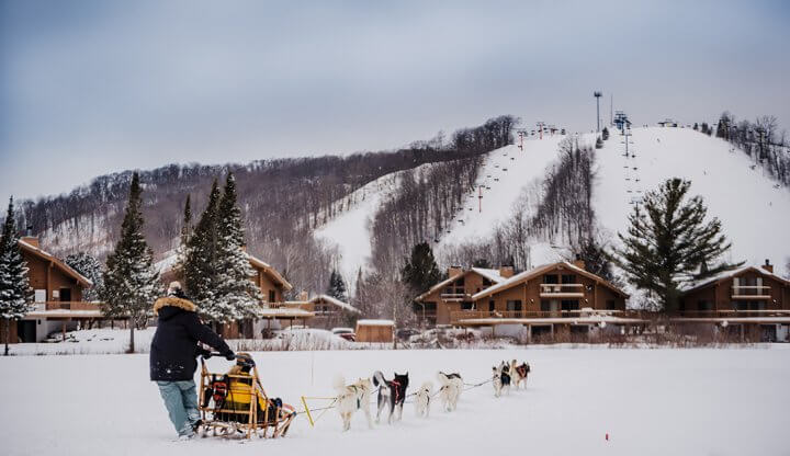 Dogsledding with Second Chance Mushers